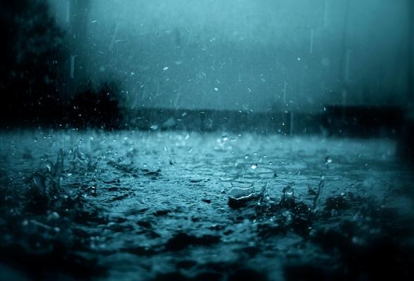 В Харькове будет холодно и мокро
