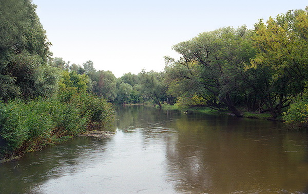 Опасные бактерии обнаружили в водоемах Харьковщины