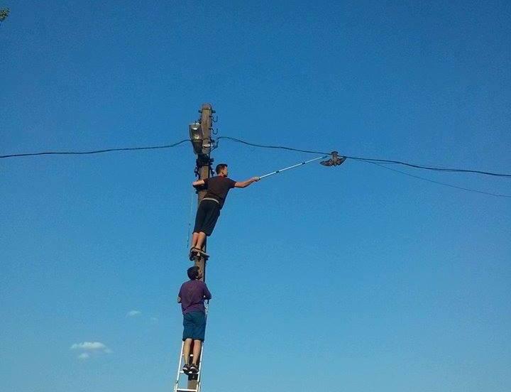 На Основянском озере спасли неожиданного потерпевшего (фото)