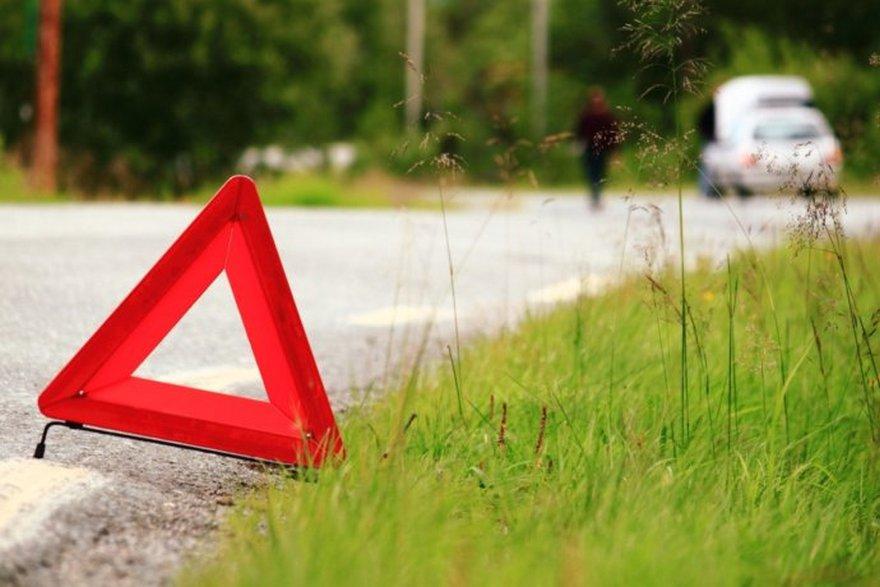 Авария на Харьковщине. Автомобиль снес ограждения и застрял между деревьев (фото)