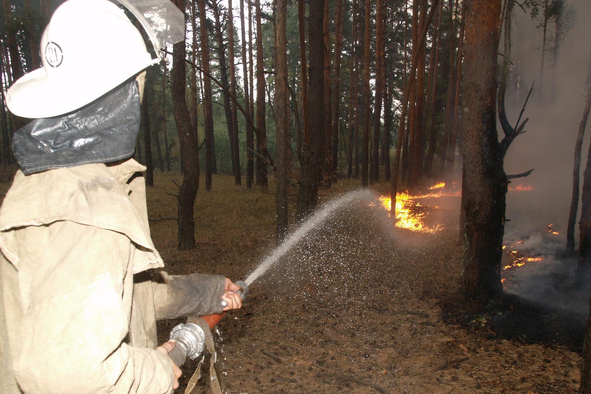 Крупные пожары окутали Харьковщину (фото)