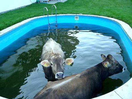 Харьковчанам придется мыться холодной водой