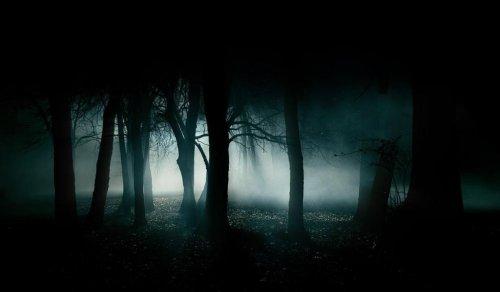 В рабочем районе Харькова девушка пережила опасное ночное приключение