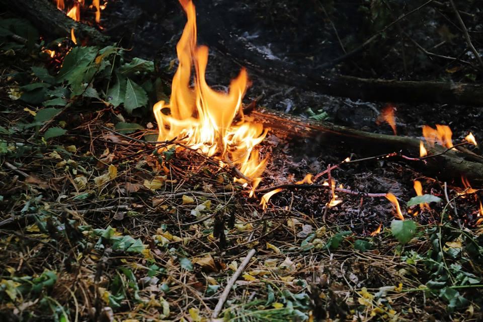 Больше суток в огне. Как ликвидировали масштабное ЧП на Харьковщине (фото, видео)