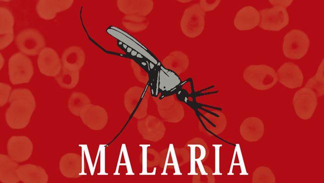 В Харькове шестеро людей переболели страшной хворью из-за насекомых