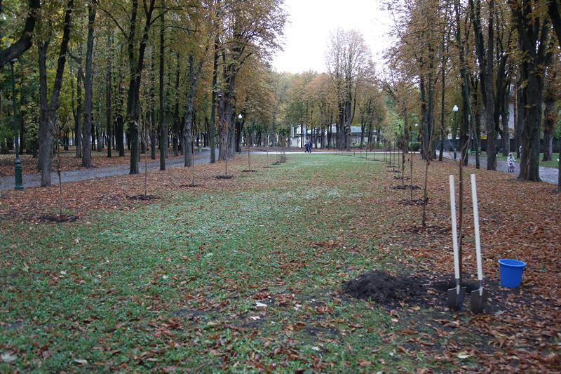 Необычная аллея появилась в Харькове (фото)