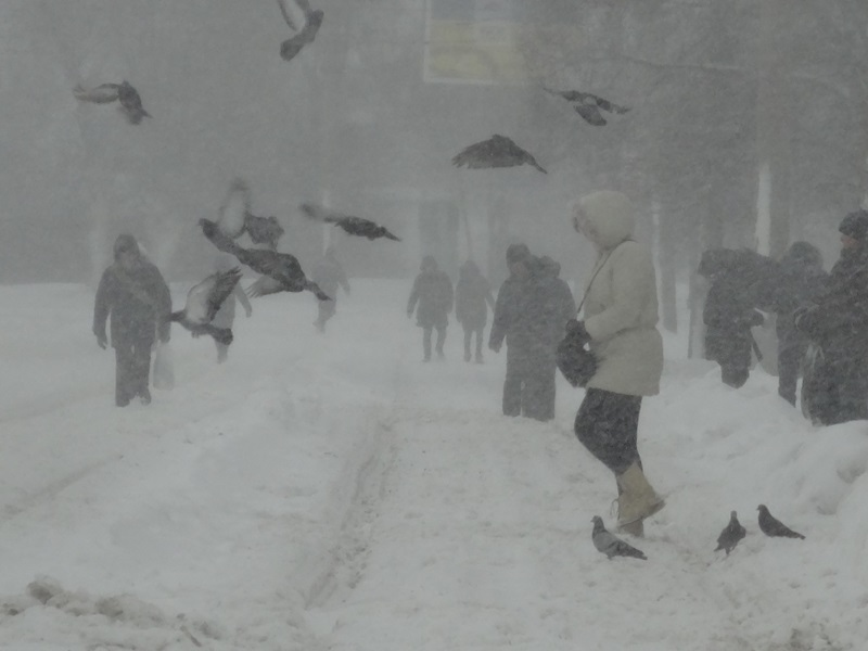 Снежный апокалипсис в Харькове (фото, видео)