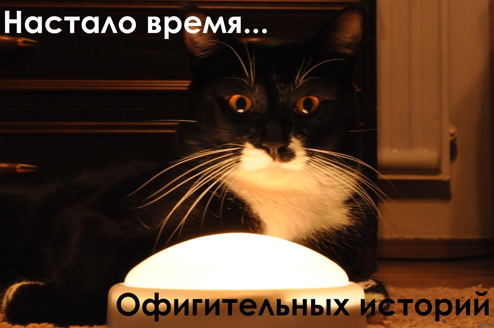 https://gx.net.ua/news_images/1523608926.jpg