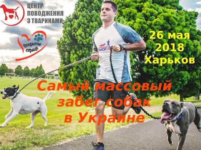 В Харькове готовятся к старту необычные бегуны