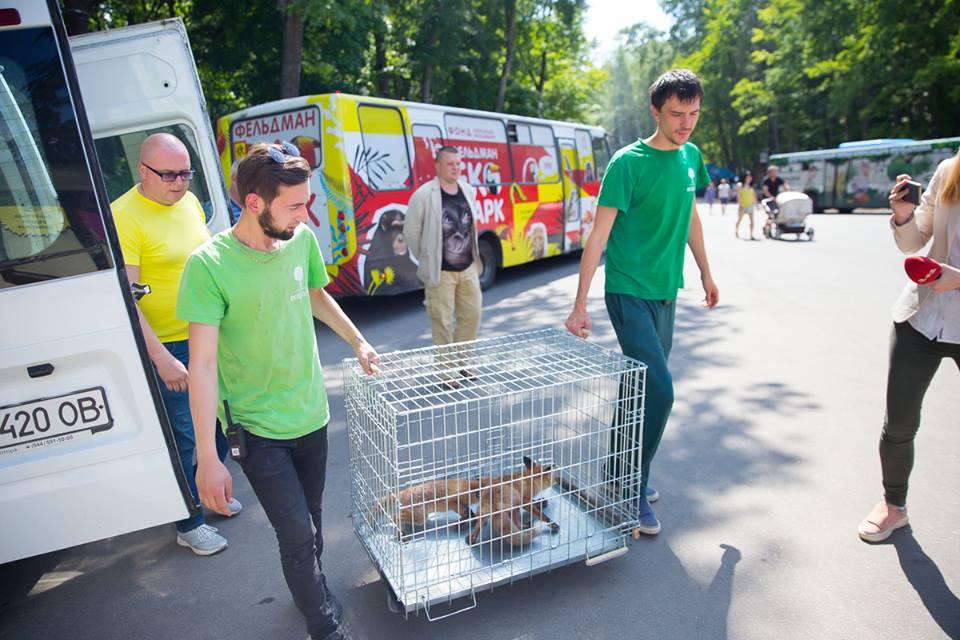 В Харьков привезли спасенную пару, от которой отказались в столице (фото)