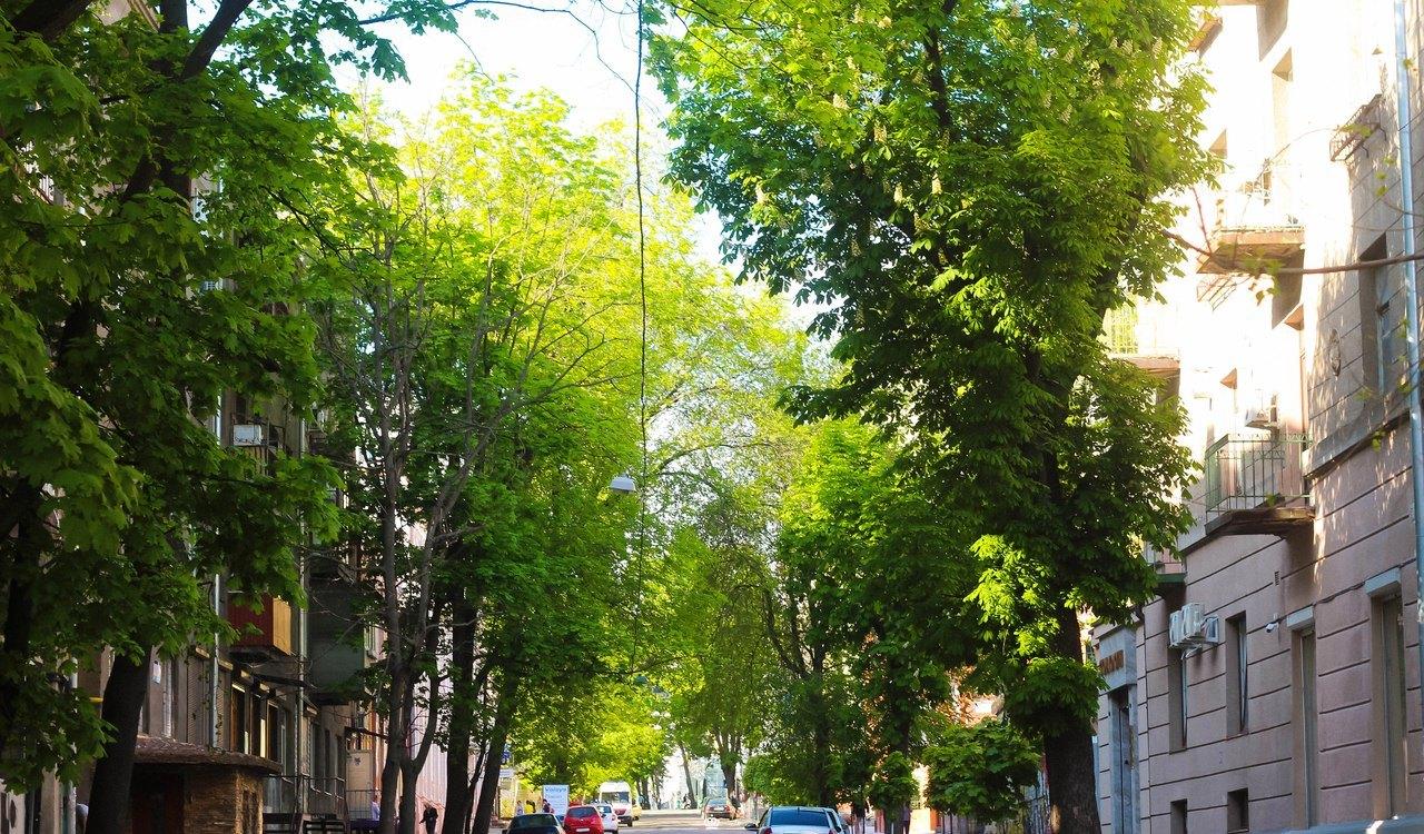 На центральной улице Харькова хотят навсегда перекрыть движение