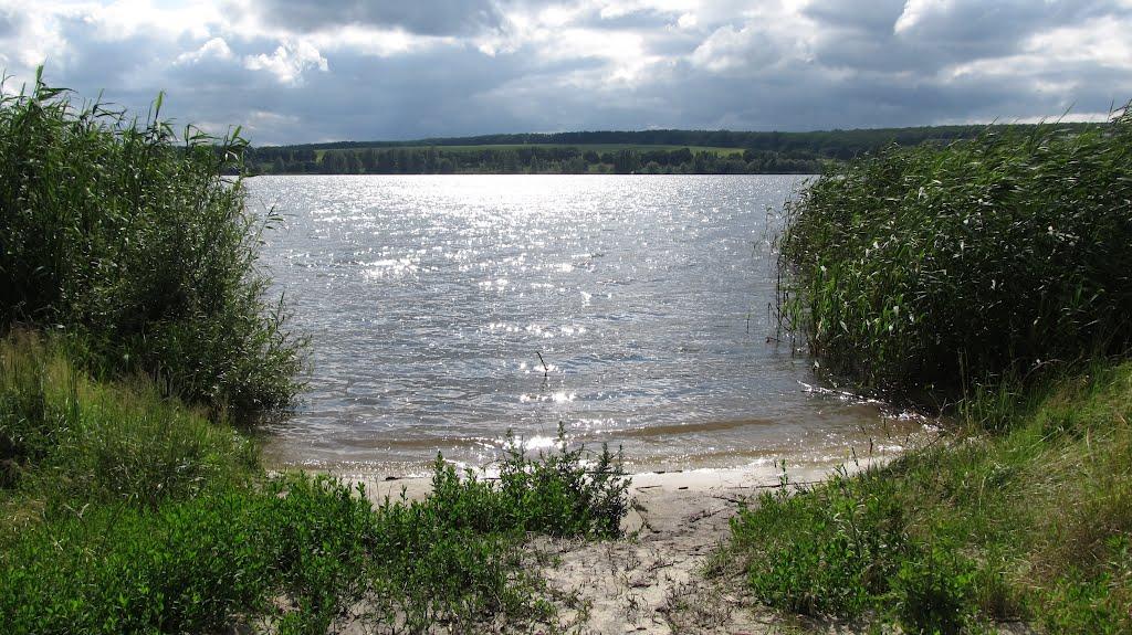 В воде на Харьковщине нашли опасные бактерии