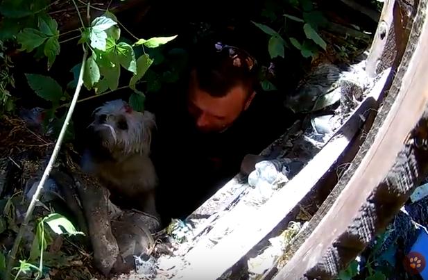 В погребе на окраине Харькова обнаружили пленника (видео)