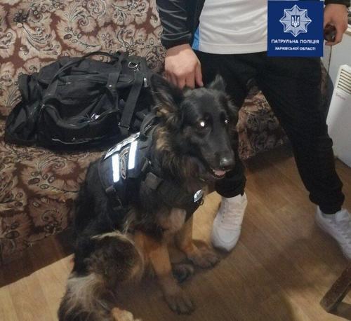В Харькове мужчине пришлось прервать поездку из-за собаки