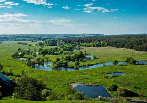 Сколько районов необходимо Харьковской области. Мнение экспертов