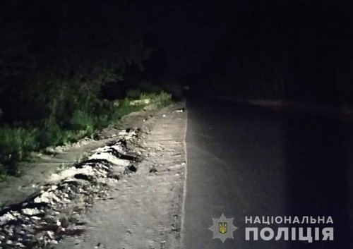 В Харьковской области молодого мужчину бросили умирать посреди дороги (фото)