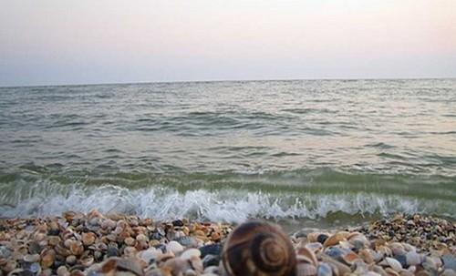 Харьковчанина на матрасе унесло в море