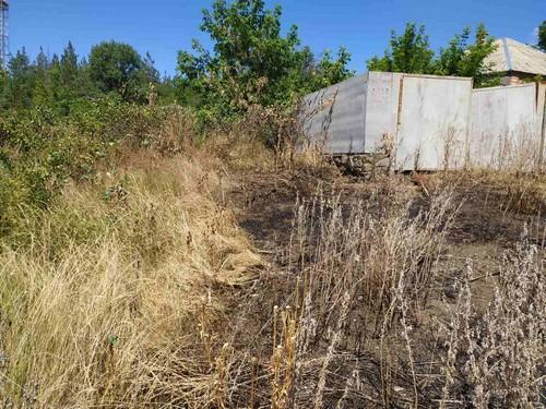 В Харьковской области женщина упала в траву и погибла (фото)