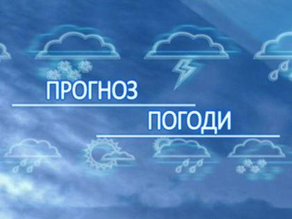 Погода в Харькове и области: прогноз синоптиков на 15 января