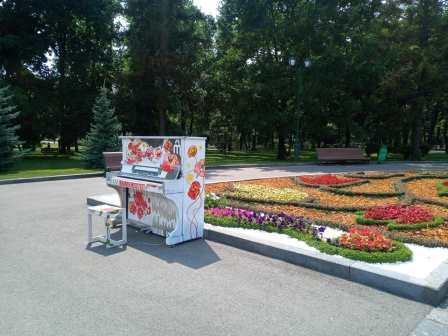 Харьковчане возмущены актами вандализма. Кому мешает красота (фото, видео)