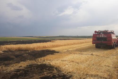 В Харьковской области сгорели дотла тонны зерновых (фото)