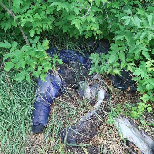 Пролежали в траве не один месяц. Человеческие останки обнаружили в Харьковской области