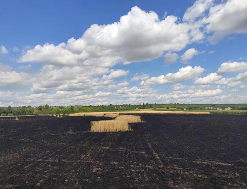 Крупный пожар произошел в Харьковской области (фото)