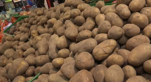 Что будет с ценой на картофель в Харькове