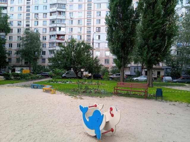 Альпийская горка и дельфин на песке: в Харькове ярко украсили двор многоэтажки (фото)