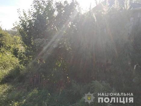 https://gx.net.ua/news_images/1598429835.jpg