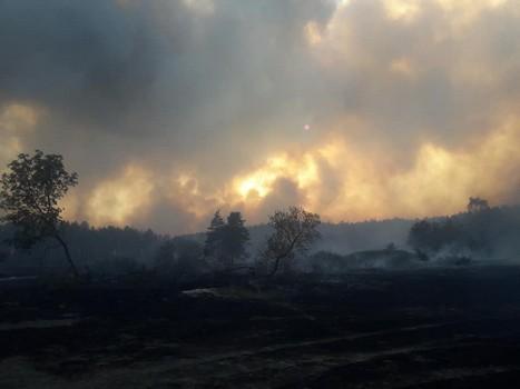 Масштабный пожар на Харьковщине. Как продвигается борьба с огнем (фото)