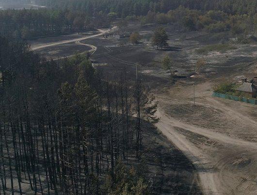 Что будет происходить на сгоревших территориях Харьковщины
