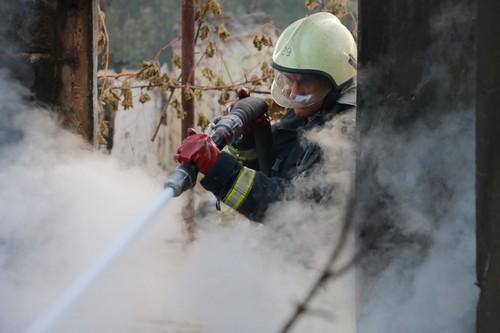 Стала известна причина масштабного лесного пожара в Двуречанском районе (видео)