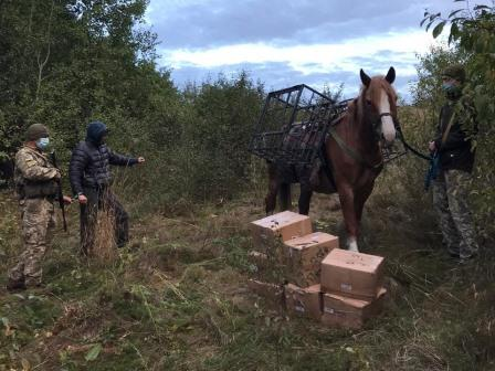 Стрельба под Харьковом. У мужчины забрали дорогостоящее имущество (фото, видео)