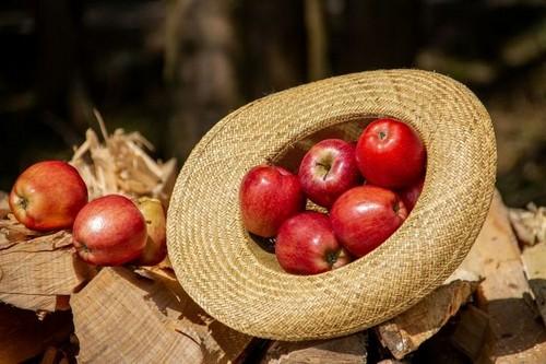 В Харькове резко подешевели яблоки