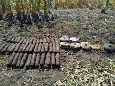 Жители Харьковской области во время уборки огорода откопали пугающий сюрприз