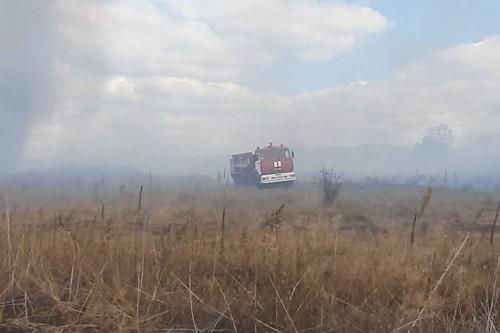 Пожар на Харьковщине: за сутки выгорело несколько гектаров (фото)