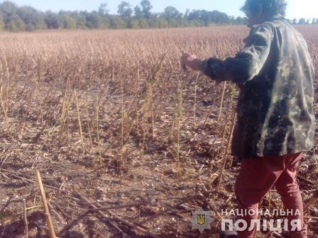 Хозяина подозрительного поля разыскивают на Харьковщине (фото)