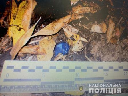 В Харькове под кустами спрятали большие деньги
