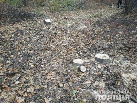 Житель Харьковщины попал погорел на проделках в лесу (фото)