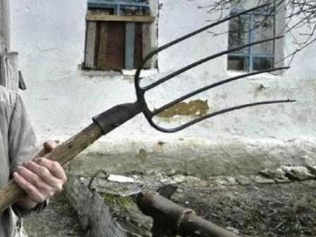 На Харьковщине подростка избили вилами