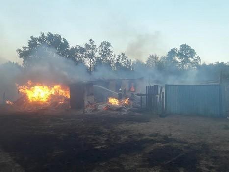 Масштабный пожар на Харьковщине: стало известно, когда пострадавшим выплатят материальную помощь