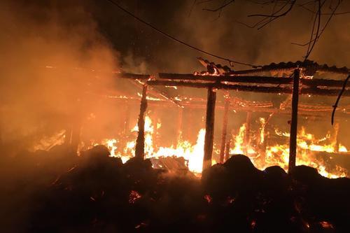 ЧП под Харьковом: в огне погибли десятки животных (фото)