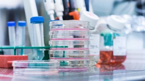 Количество заболевших коронавирусом на Харьковщине: почему отличаются данные Минздрава и областного лабцентра