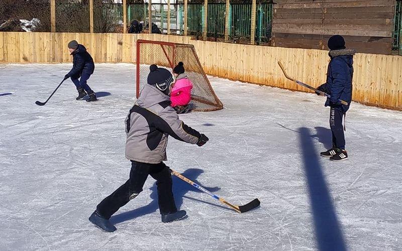 В поселке на Харьковщине придумали, чем отвлечь детей от гаджетов (фото)