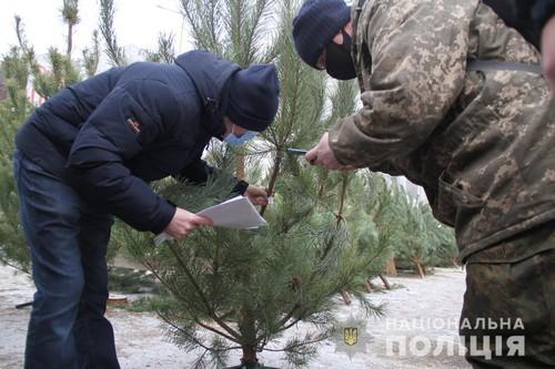 В Харькове провели новогоднюю спецоперацию (фото, видео)