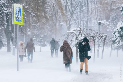 Снегопад в Харькове: что творится на дорогах города (фото, видео)
