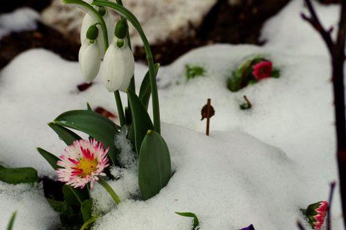 Семь погодных рекордов зафиксировали в Харькове
