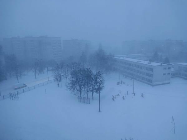 В Харькове - снегопад и сильный ветер (видео)