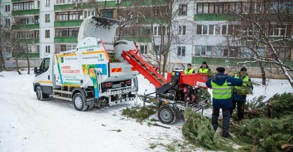 В Харькове рассказали, что будет с выброшенными на мусорку елками (фото)